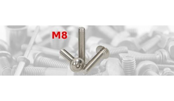 ISO 7380 MF A2 M8